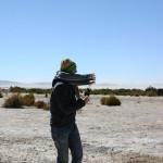 Lobosch auf Lamasafari