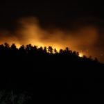 Waldbrand in der Nacht