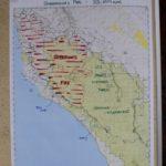 Waldbrand map